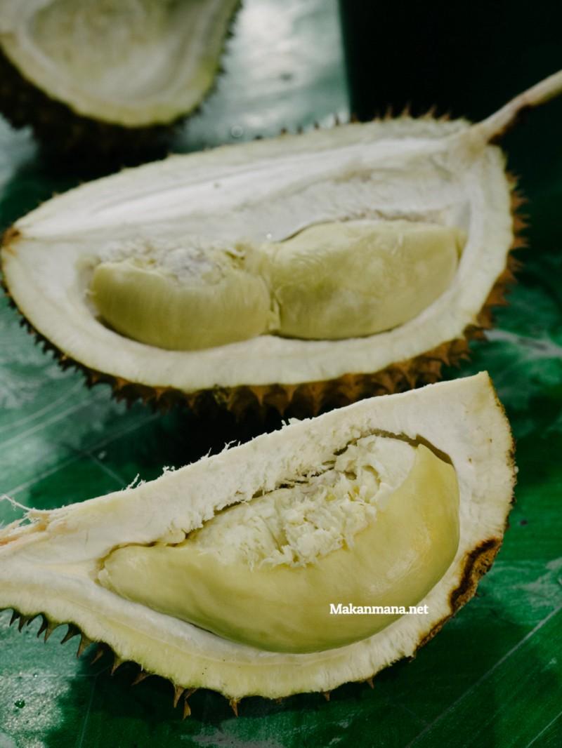 durian si bolang